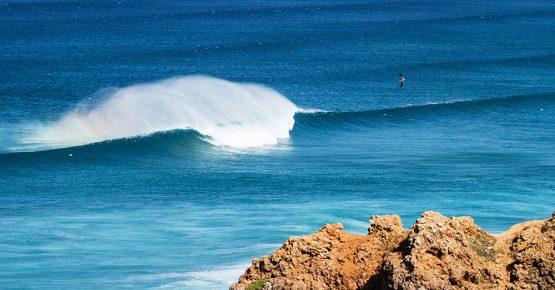 Truck Surf Hotel Surf guiding
